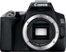 Fotoaparatas Canon EOS 250D